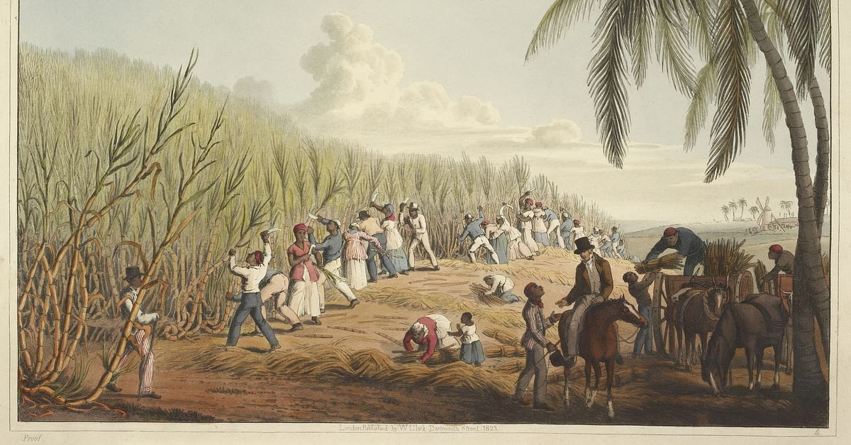 Slavery in Plantation Agriculture