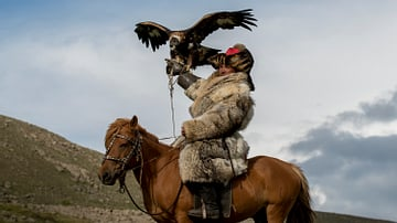 Mongol Falconer