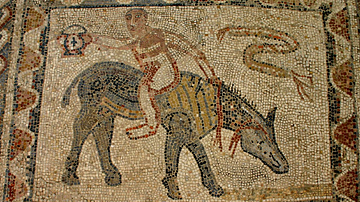 House of the Athlete Mosaic, Volubilis