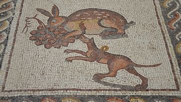 Hunting Dog Mosaic