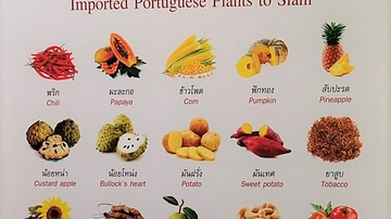 Foods and Plants Introduced to Thailand by the Portuguese