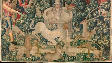 The Unicorn Purifies Water