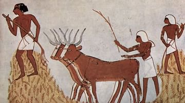 Ancient Egyptian Agriculture