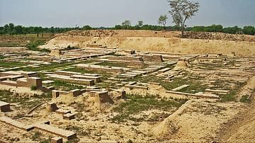 Harappa: An Overview of Harappan Architecture & Town Planning