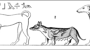 Egyptian Dog Types