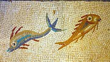 Roman Fish Mosaic, Tarraco