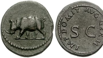 Imperial Roman Coin Portraying a Rhinoceros