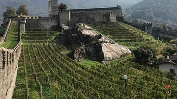 View of Castelgrande's Vineyard in Bellinzona