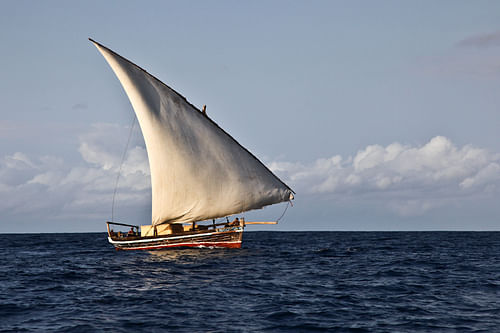 Traditional Dhow Sailing Vessel (by Alessandro Capurso)