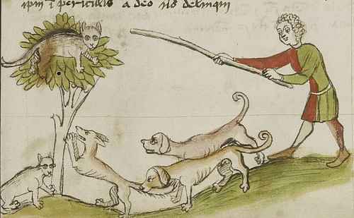 Cats in the Middle Ages