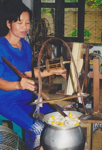Thai Woman Boiling  Silk Cocoons