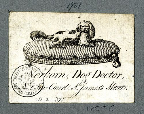 Trade Card of a Veterinary Surgeon