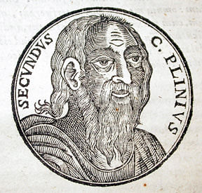 Pliny the Elder (by Littlehelper, Public Domain)