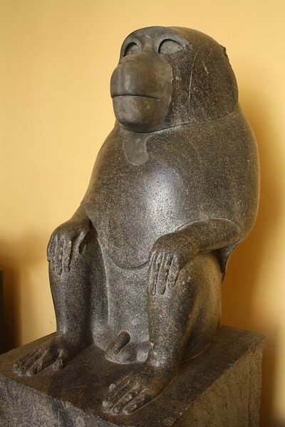 Pets in Ancient Egypt - Ancient History Encyclopedia