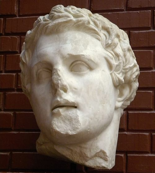 Lysimachus (by Ian Scott, CC BY-SA)