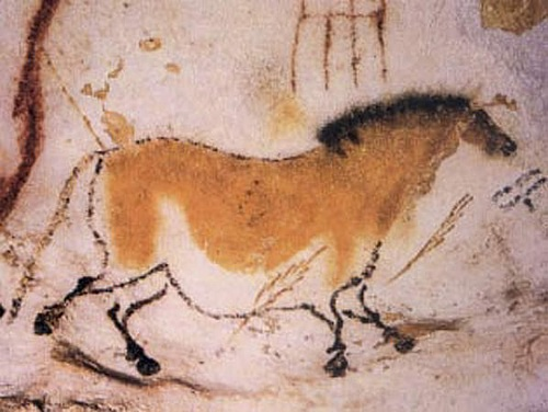 Painting of a Horse, Lascaux Cave (by Sevela.p)