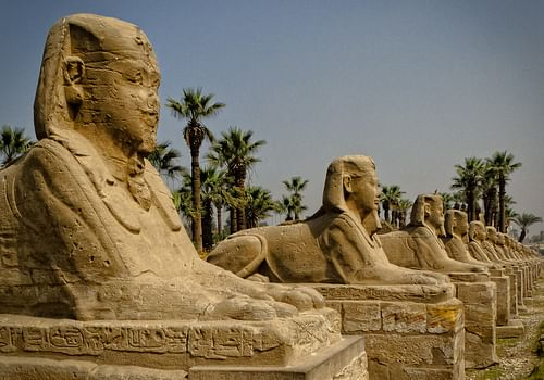 Avenue of the Sphinxes, Thebes (by sdhaddow)