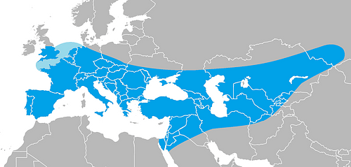Geographical Range of Neanderthals