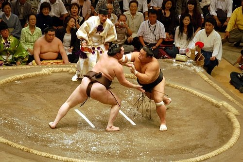 A Sumo Wrestling Bout (by sophietica, CC BY-NC-SA)