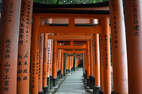 Torii, Fushimi Inari shrine (by James Blake Wiener)