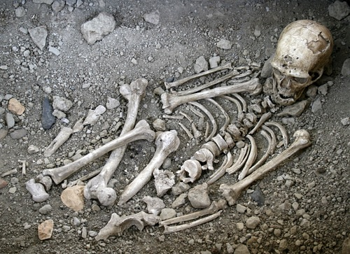 Neanderthal Burial, La Chapelle-aux-Saints (reconstruction)