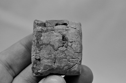 Illegally Excavated Mesopotamian Clay Tablet [2]