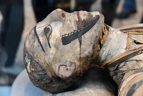 Head of a Mummy from Ptolemaic-Roman Egypt