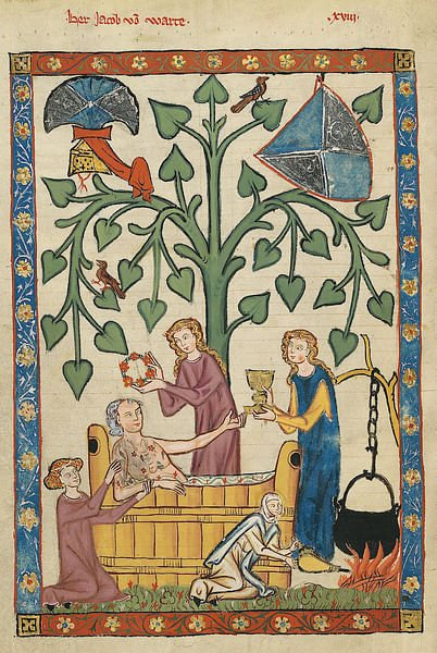 Medieval Noble Taking His Bath