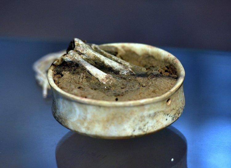 Bowl with Bones from Tell es-Sawwan
