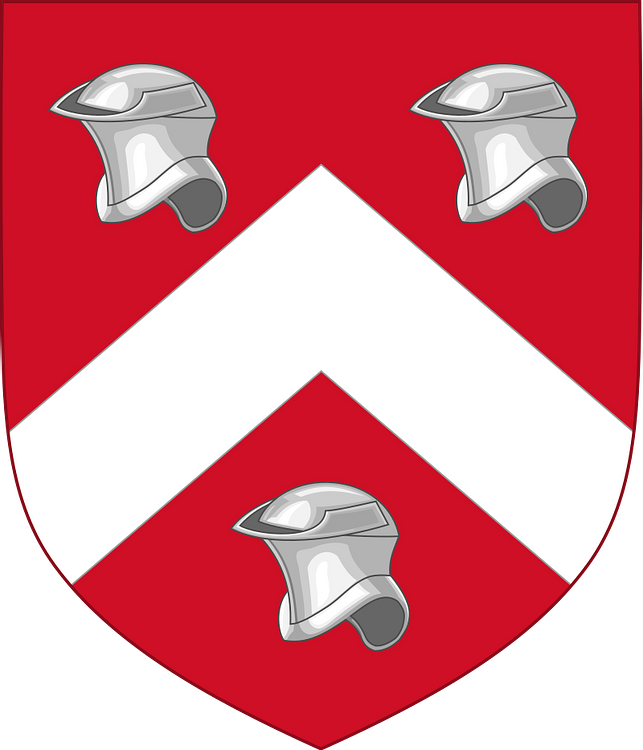 Arms of Owen Tudor