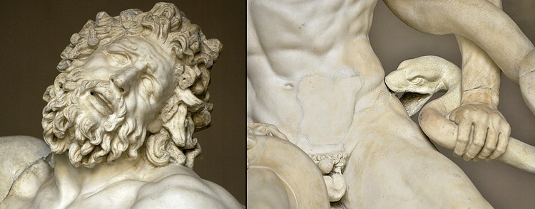 Details from Laocoön & His Sons