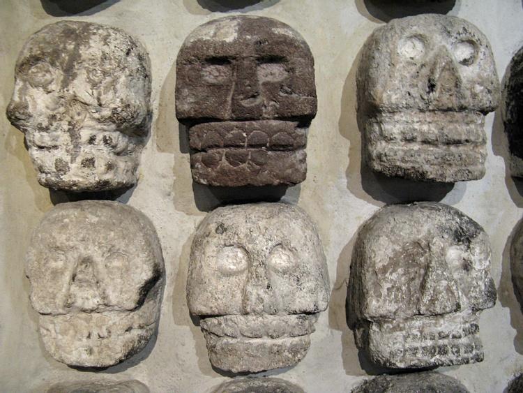Crânios Astecas, Templo Mayor (Travis S.)