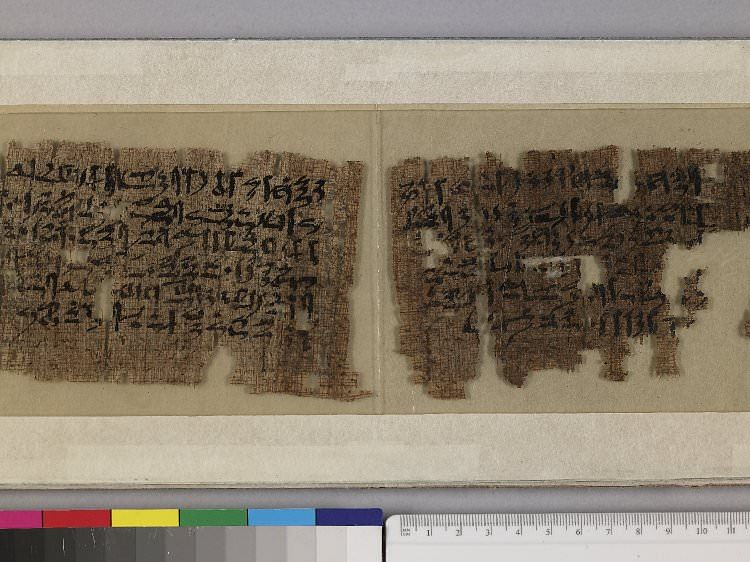 the eloquence of the scribes thesis
