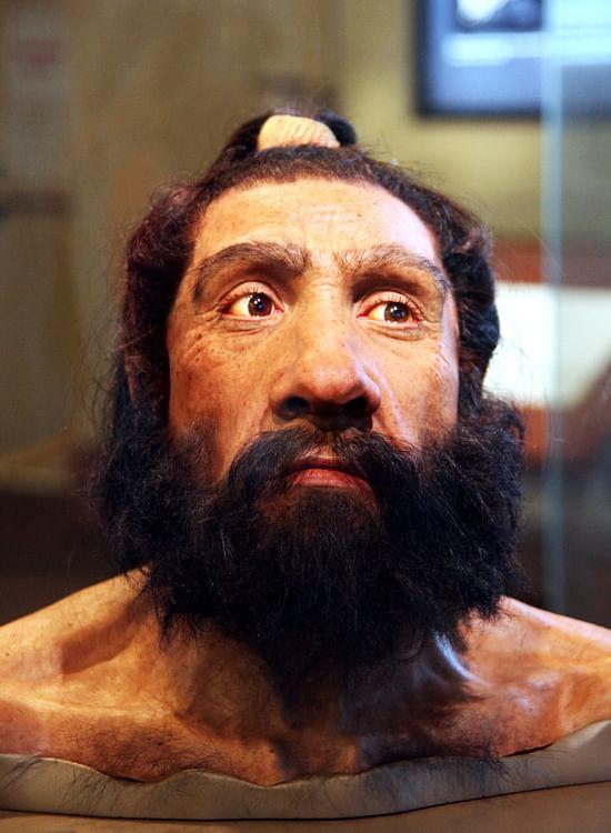 Hombre de Neanderthal (Tim Evanson)