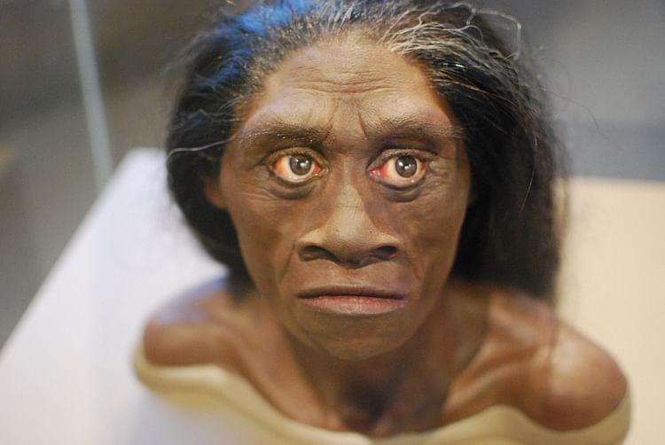 Reconstrucción Homo Floresiensis (Karen Neoh)