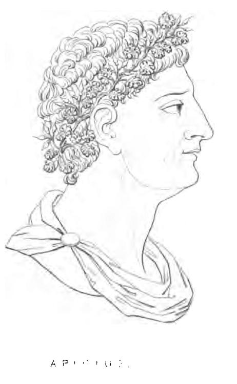 Apicius (Alexis Soyer)