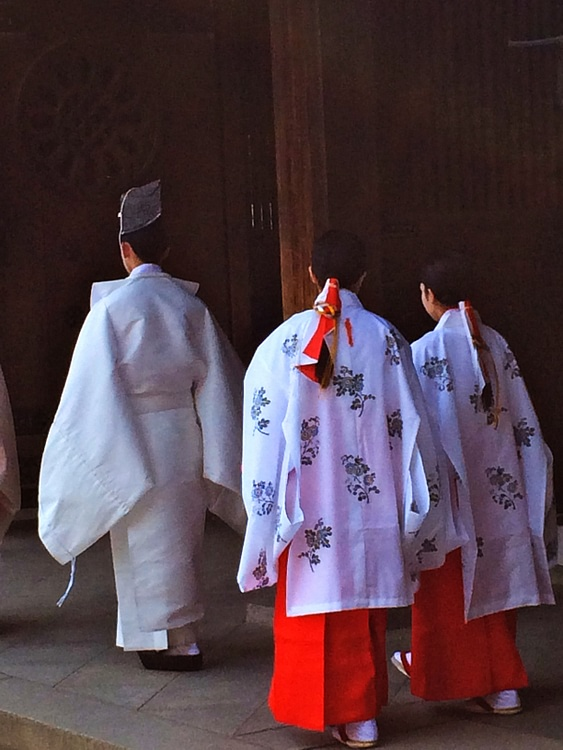 Shinto Priest and Female Shrine Stewards at Meiji Shrine