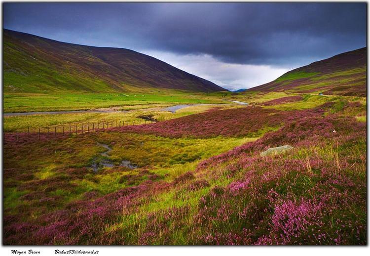 Tierras Altas de Escocia (Moyan Brenn)