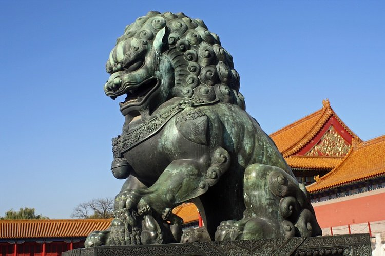 Chinese Lion-Dog