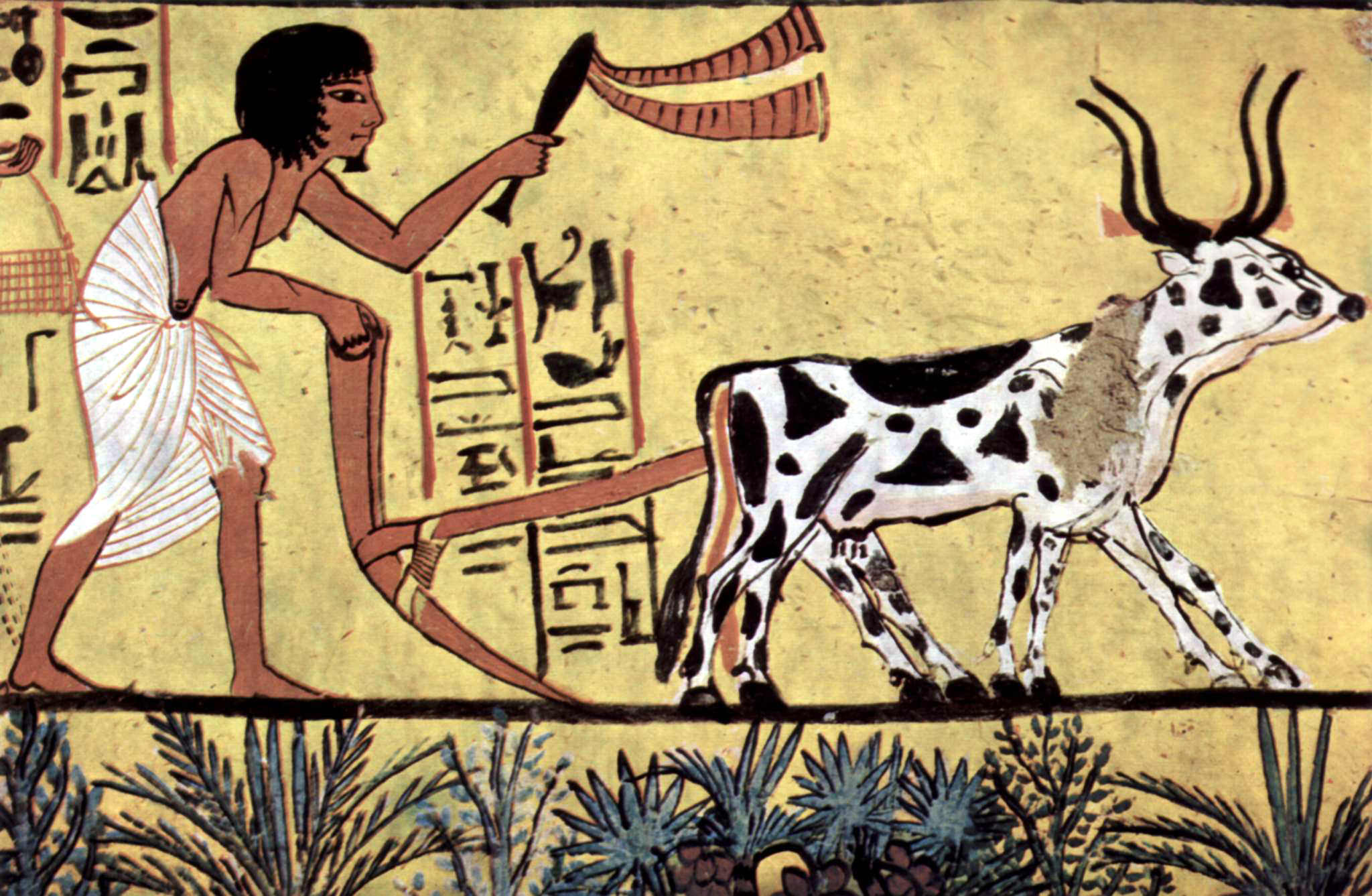 Plowing Egyptian Farmer (Illustration) - Ancient History Encyclopedia