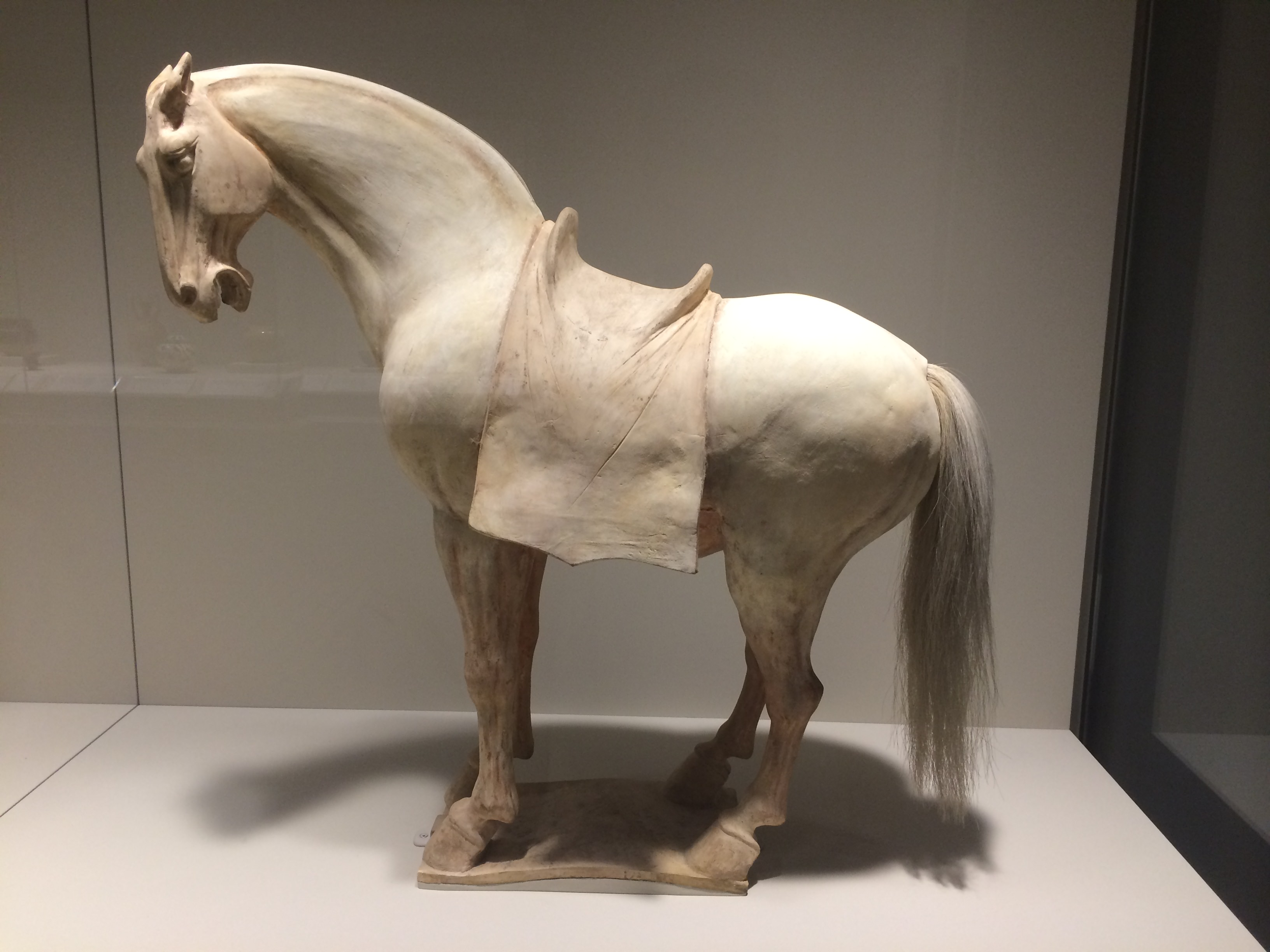 Tang dynasty ancient history encyclopedia tang dynasty horse biocorpaavc Choice Image