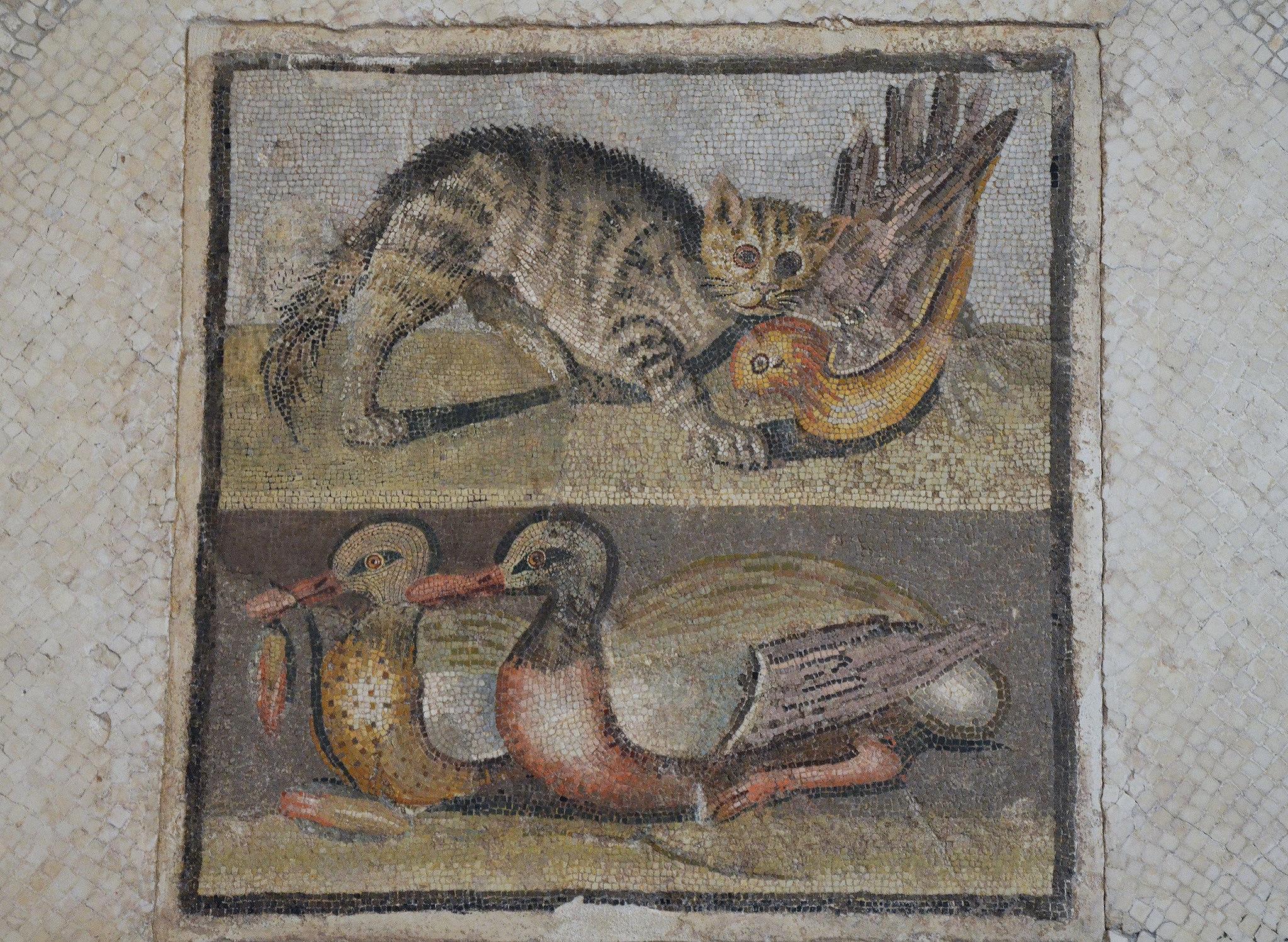Mosaic In Opus Vermiculatum Illustration Ancient History