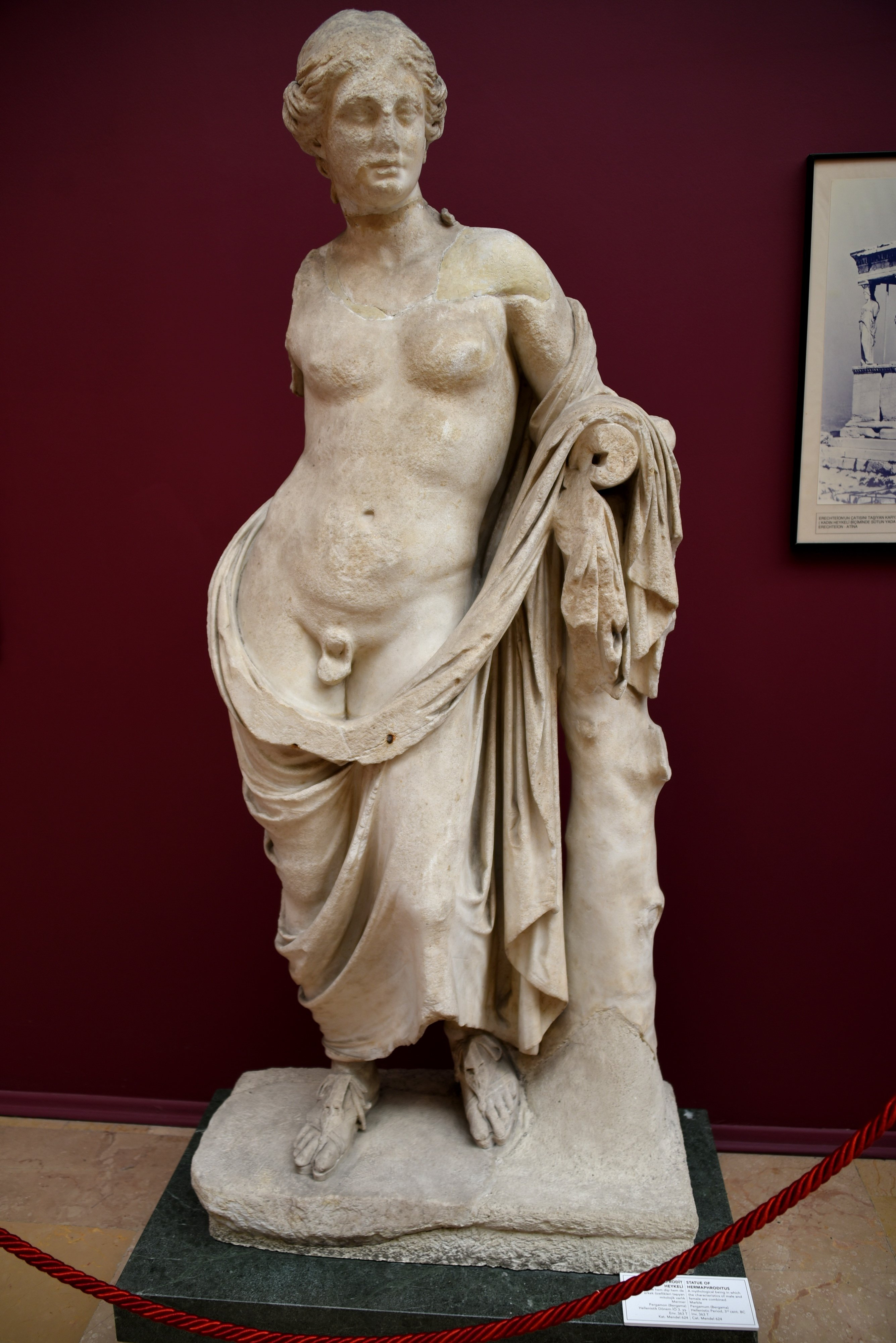 Statue of Hermaphroditus from Pergamon (Illustration) - Ancient History  Encyclopedia