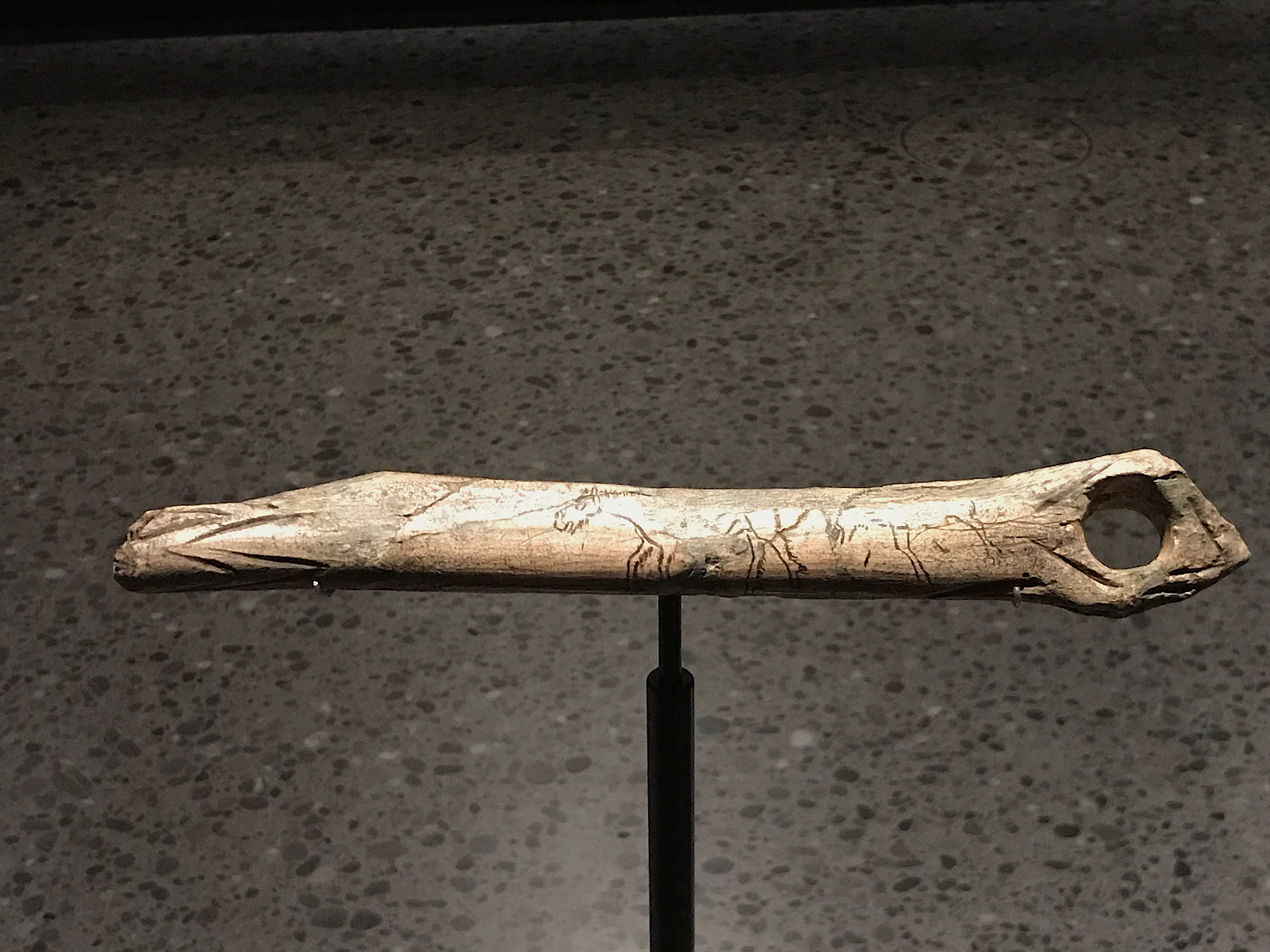 Prehistoric Carving Of Horses On Bone Illustration Ancient History Encyclopedia