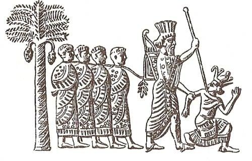 Cambises II de Persia
