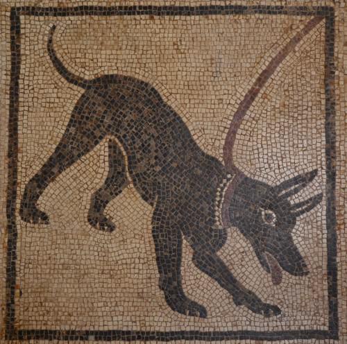 Cave Cavem mosaic from Pompeii