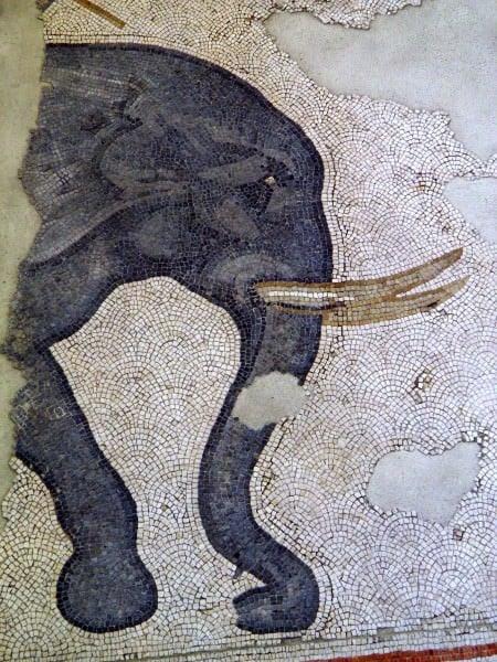 Detalle de un mosaico de elefantes CE del siglo VI