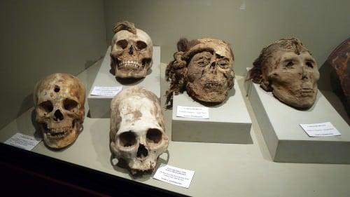 Mummy Skulls, Cahuachi