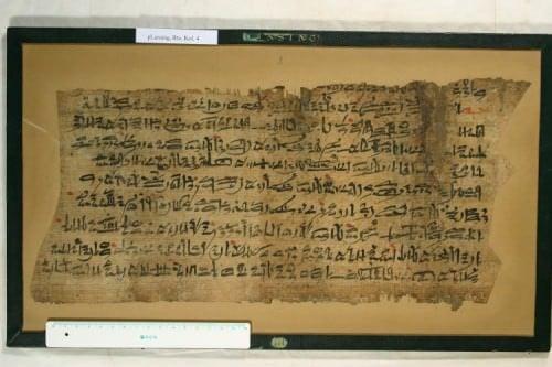 Papyrus Lansing