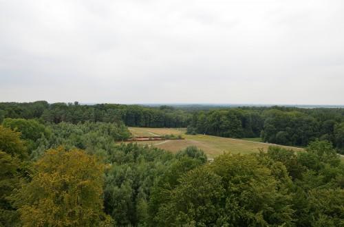Floresta de Teutoburg